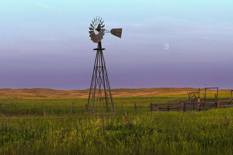 Field in Nebraska